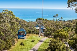 Rosebud & Dromana Top 5 Nature Attractions